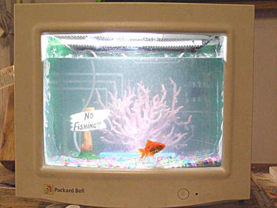CRT fish tank